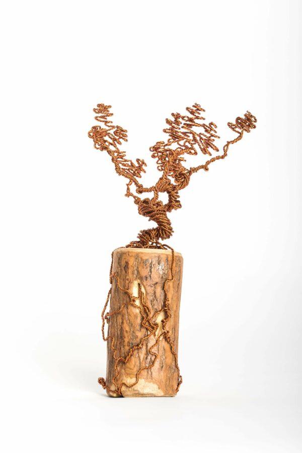 ajandek-bonsai-drotfa-rez-acel-aluminium-horgany-06