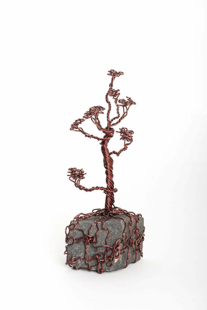 ajandek-bonsai-drotfa-rez-acel-aluminium-horgany-08