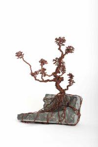 ajandek-bonsai-drotfa-rez-acel-aluminium-horgany-03