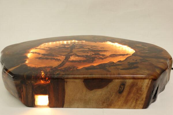 epoxy-gyanta-led-lámpa-rafiki-fa-122.1