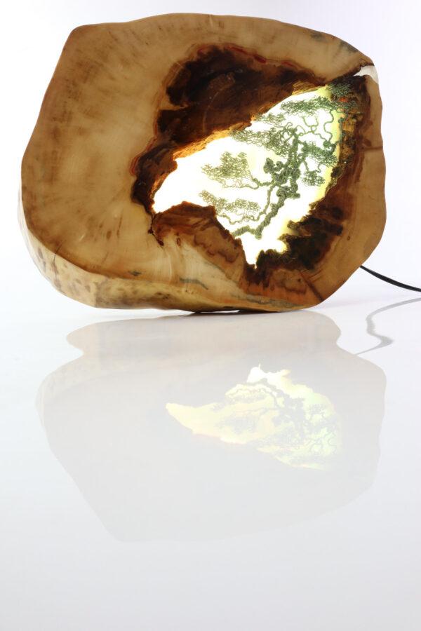 műgyanta epoxy lámpa ajándék drótfa led lámpa réz acél alumínium horgany-108.10